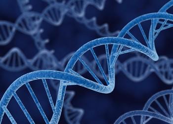 تفاعل البوليميراز المتسلسل  (PCR)